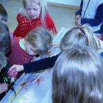 Sækóngulær og krossfiskar í skólastofu