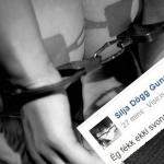 Silju Dögg ekki boðið í BDSM partý – Upptekin í innanflokksmálum Framsóknarflokks